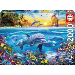 EDUCA : Pz.2000 FAMILIA DE...